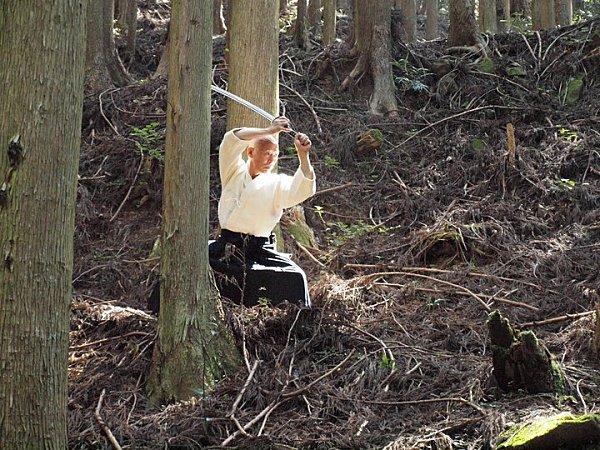 Hino-Sensei-Wood