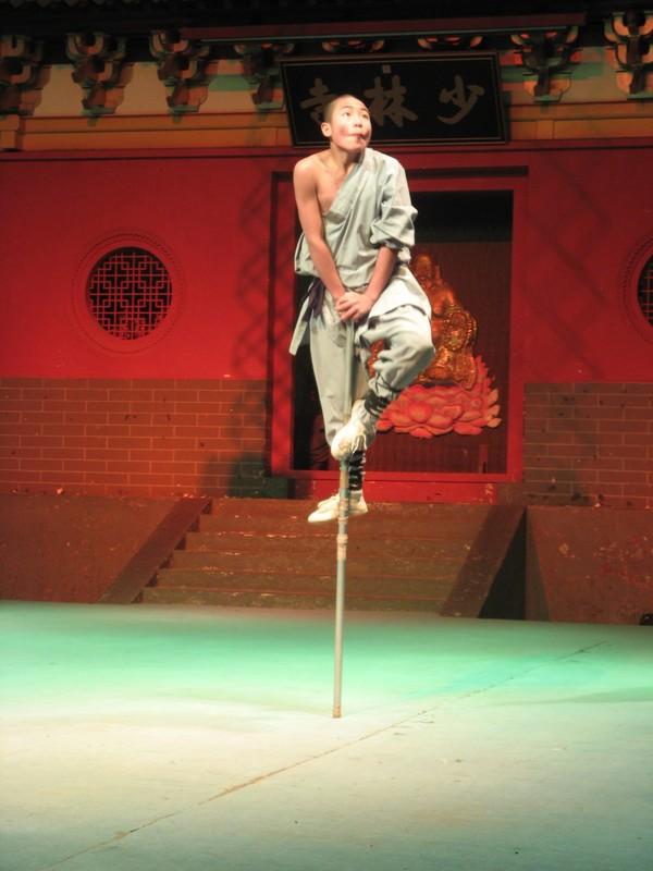 Shaolin, style du singe