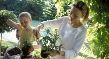 eveil---5-activites-pour-initier-son-enfant-a-l-ecologie