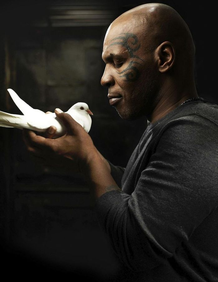 603693-publicity-photo-shows-former-boxer-mike-tyson-holding-a-pigeon-on-the-set-of-his-six-part-documentar