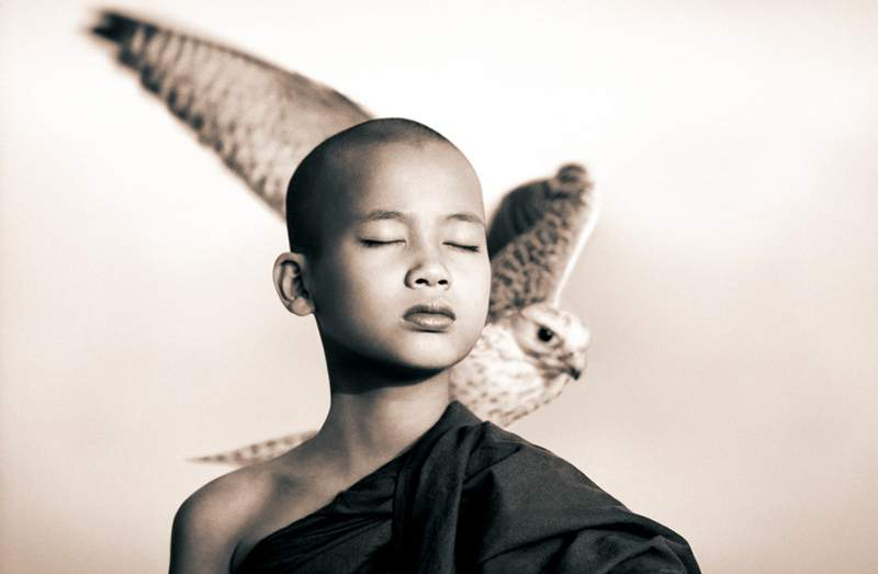 ashes-and-snow-by-gregory-colbert