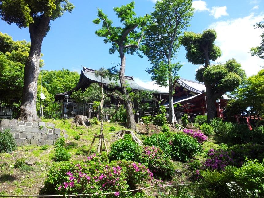 Archive personnelle, Temple Kiyomizu Kannon-do, parc Ueno