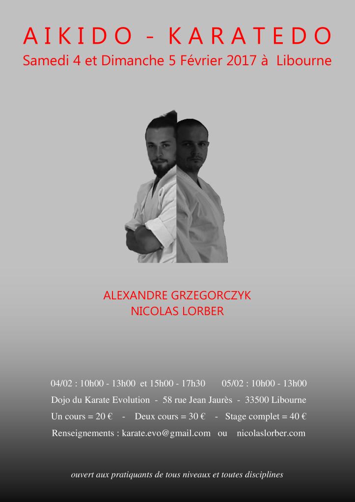 affiche-alex-fev-2017-2
