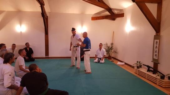 Stage Hino senseï au Kishinkan dojo Limoges