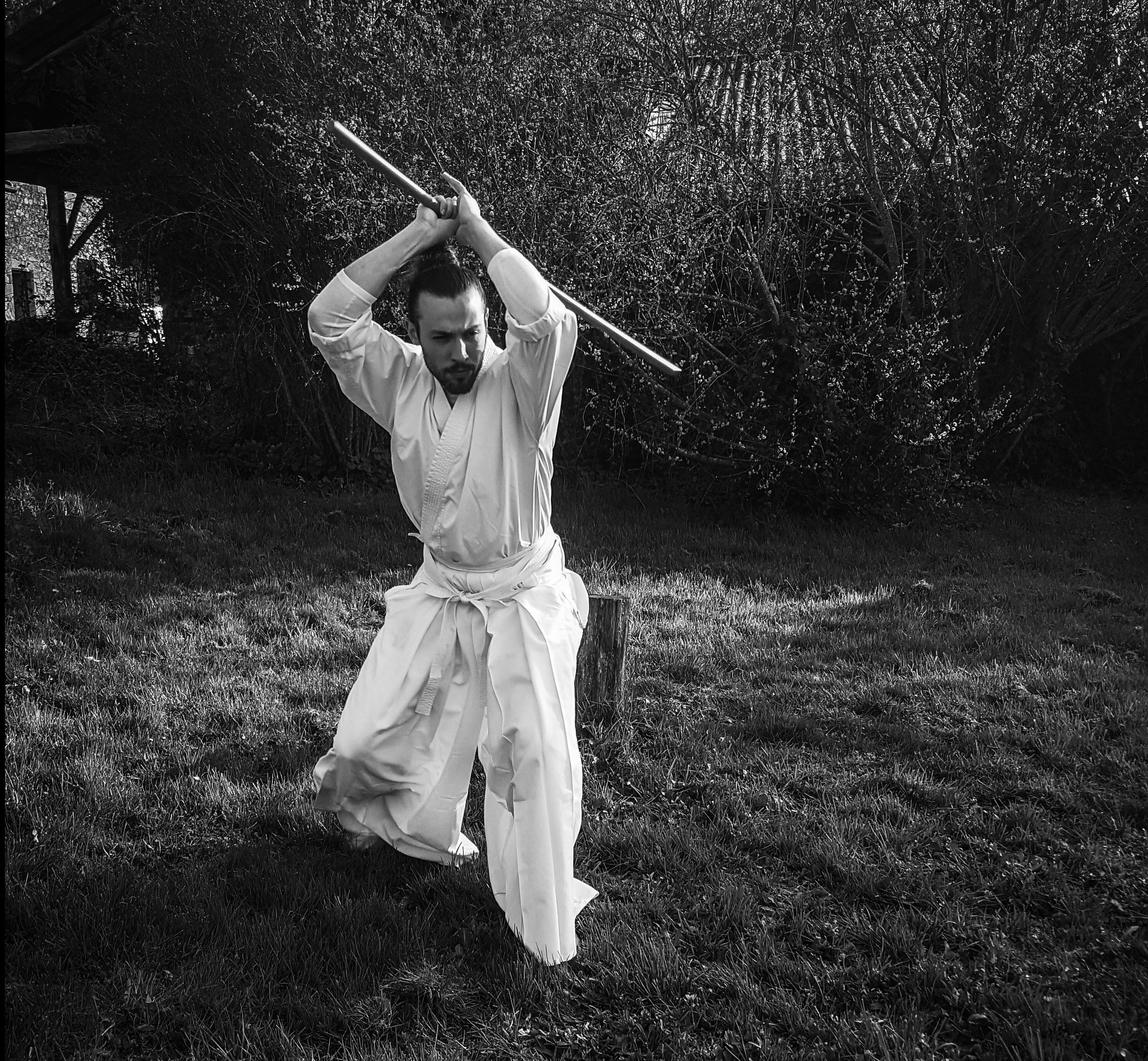 Loin du dojo: entrainement, progression, acquisitions, perte de compétences